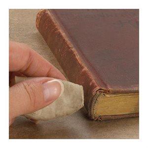 Nettoyant pour livre Groom Stick